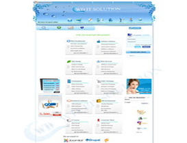 Voip Website Design with Custom CDR